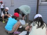 清掃ボランティア  (H24) 6月8.JPG