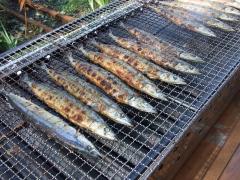 秋刀魚の塩焼き2.JPG