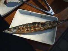 秋刀魚の塩焼き3.JPG