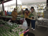 苗買い (H25.5.15)1.JPG