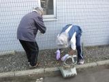 H24 園外清掃2.JPG
