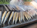 H24 秋刀魚の塩焼き3.JPG