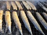H24 秋刀魚の塩焼き4.JPG