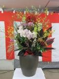 H25 新年祝賀会 3.JPG