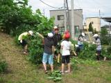 H25 清掃ボランティア 6月 9.JPG